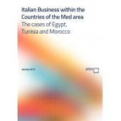 Italian Business within the Countries of the Med area – The cases of Egypt,Tunisia and Morocco
